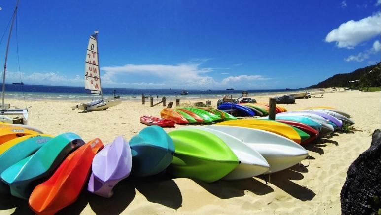 サーフィン・ボディーボードジャッジ(審査員)国際免許プログラム