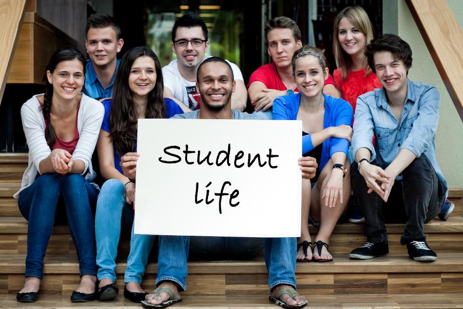 学生ビザを取りたい方、どの学生タイプを目指したい?